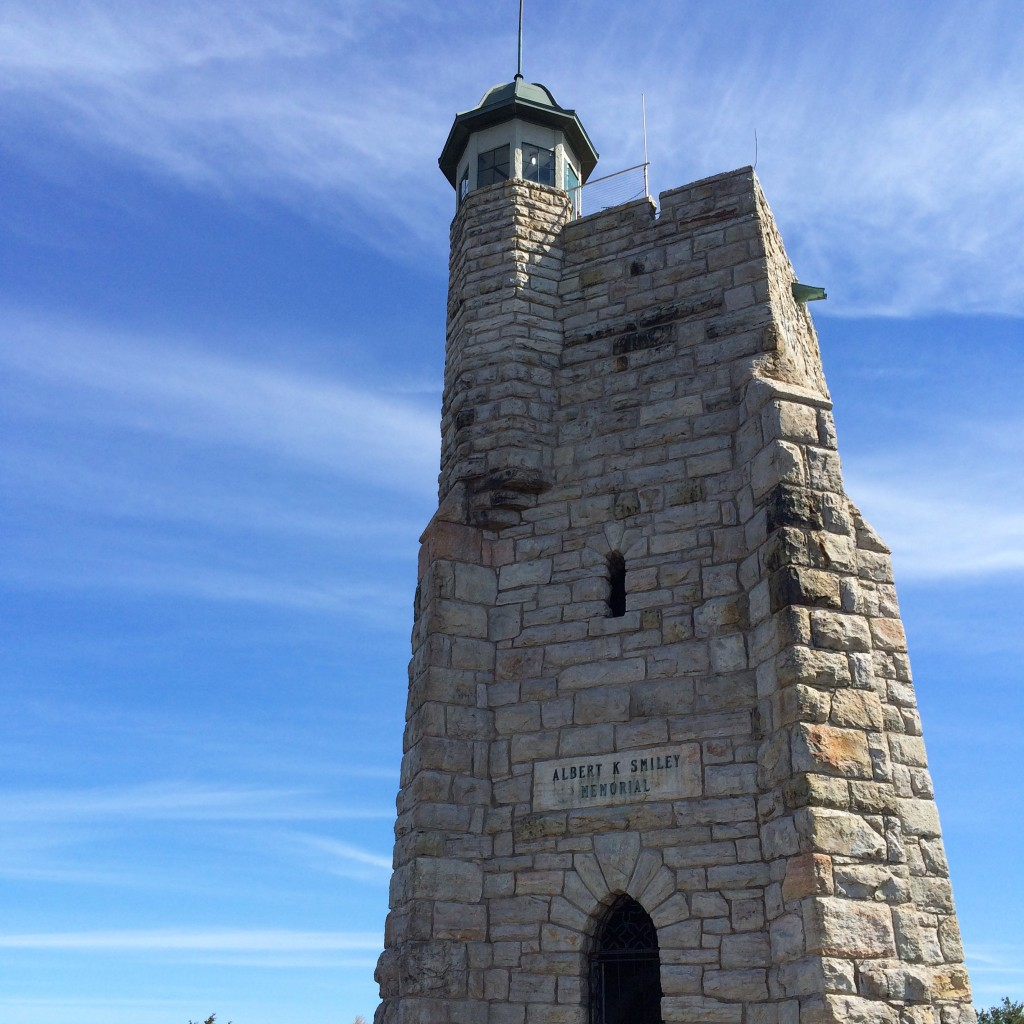 ラプンツェルの塔だよ〜と言って娘と頑張って登ったよ