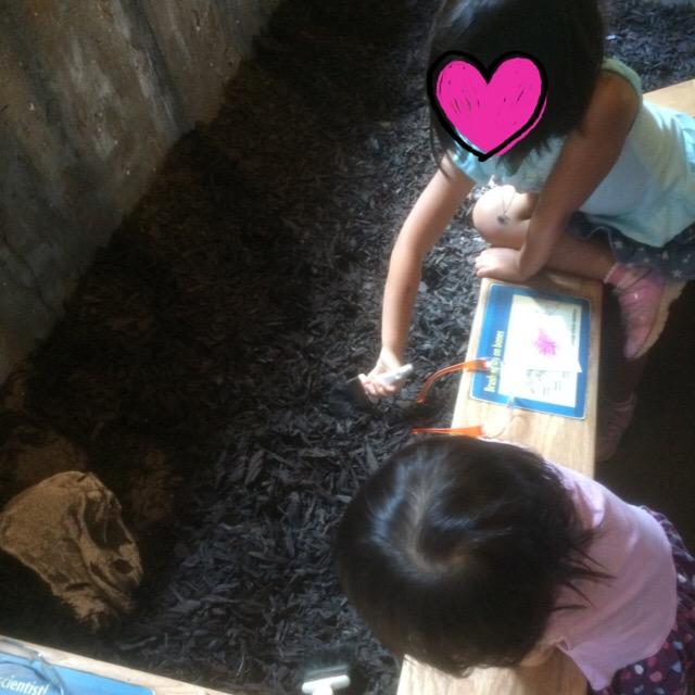 擬似化石発掘体験。最近化石に興味のある長女は真剣