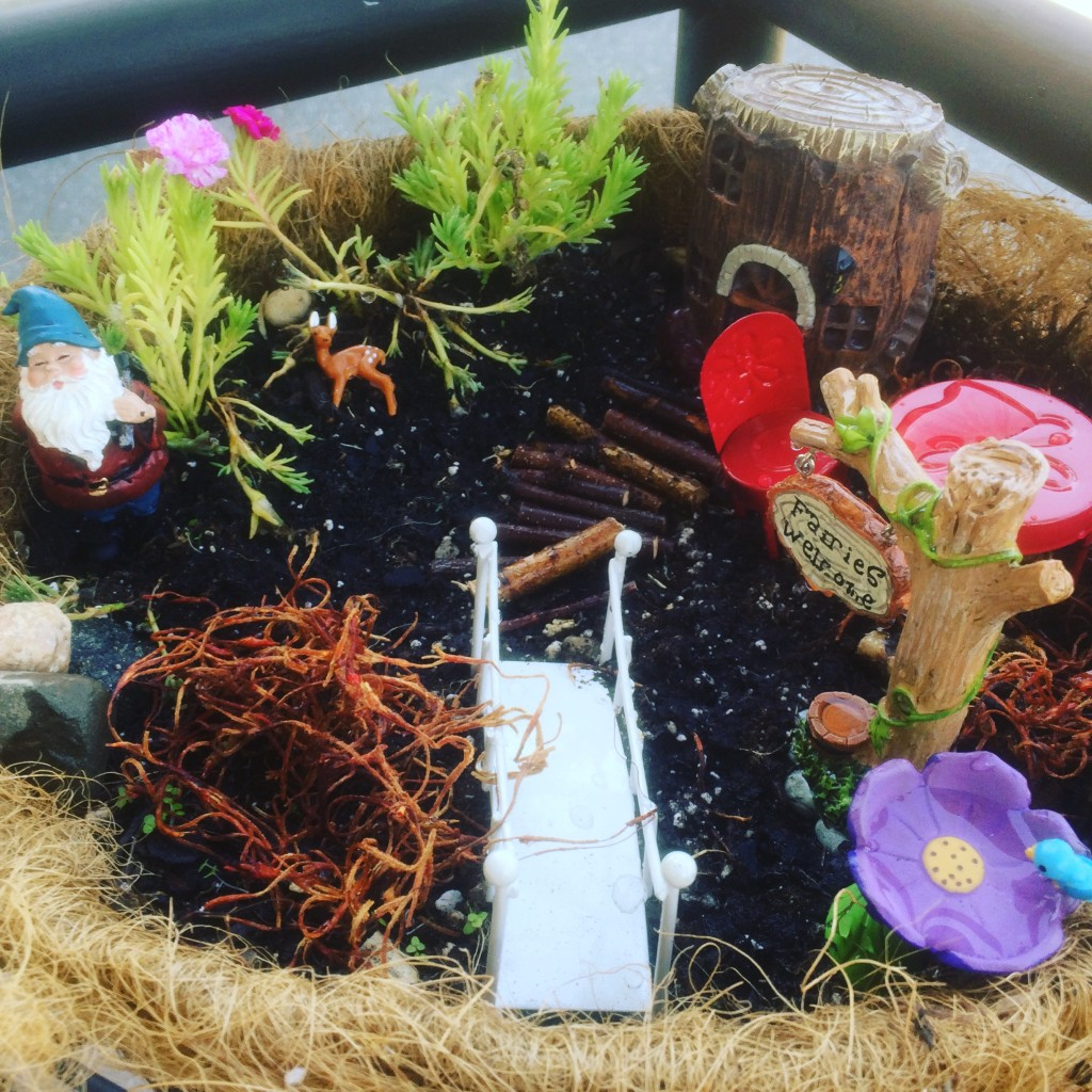 次女作。丸型の鉢植え
